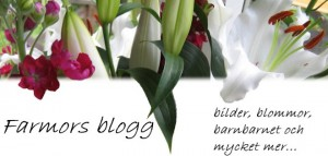 En farmors blogg