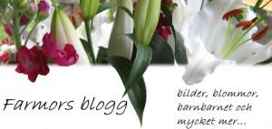 En farmors blogg